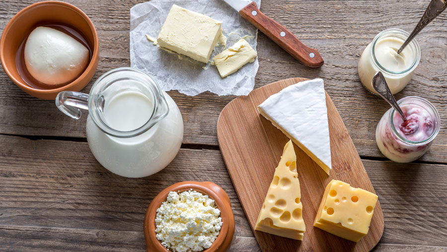 Image result for Dairy Ingredients