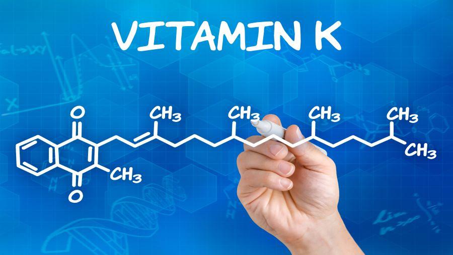 Slide Show: Vitamin K and Bone Health