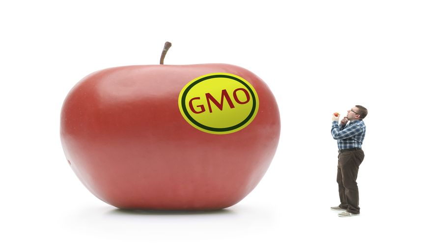 Defining GMOs for the Upcoming Disclosure Regulations
