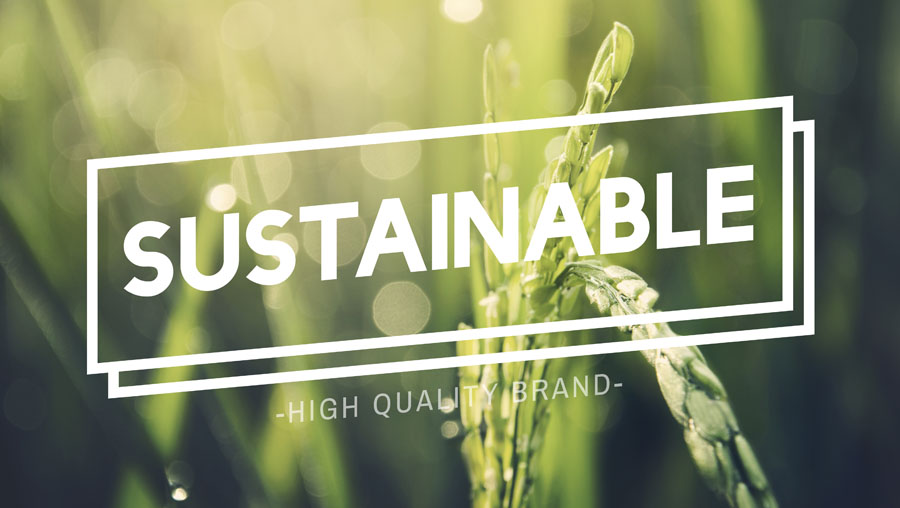 Sustainable Ingredients & Supply Chain Transparency