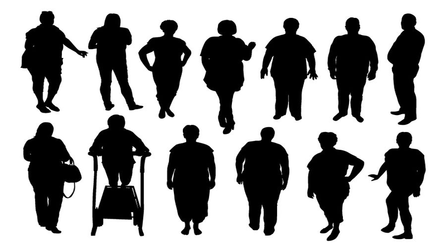 Addressing the Real Root Causes of the Obesity Epidemic