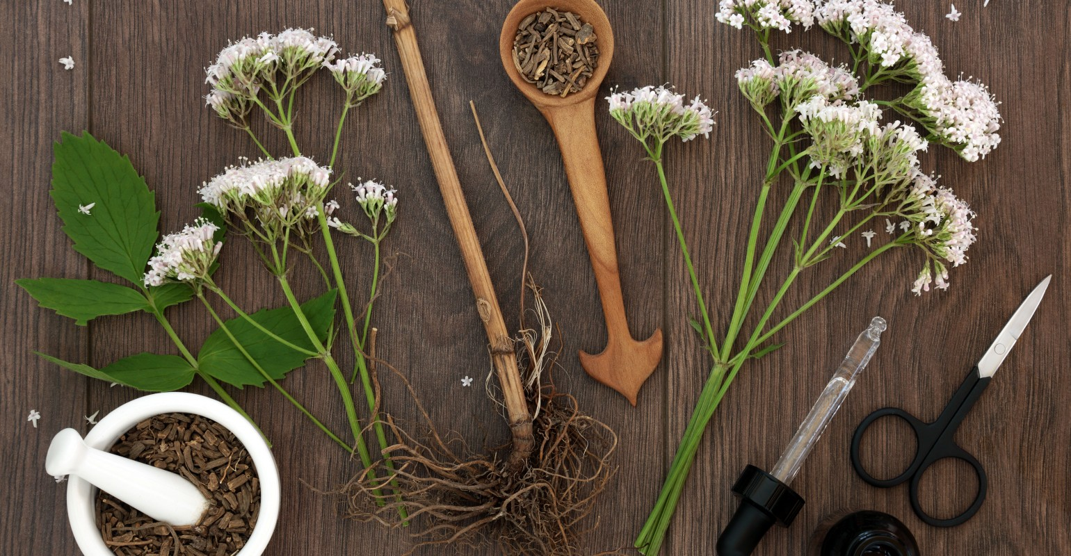 Stress in America and possible botanical solutions   Natural ... on herb garden table, herb garden font, herb garden ideas, herb garden direction, herb garden spacing, herb garden layout, herb garden common mistakes, herb garden theme, herb garden background, herb garden attraction, herb garden art, herb garden fabric,