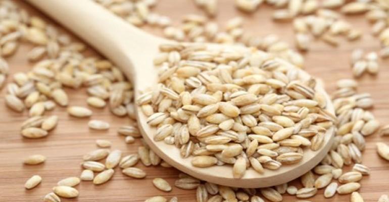 Barley Improves Blood Sugar Levels, Reduces Diabetes Risk