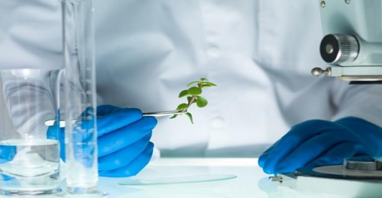 botanical testing