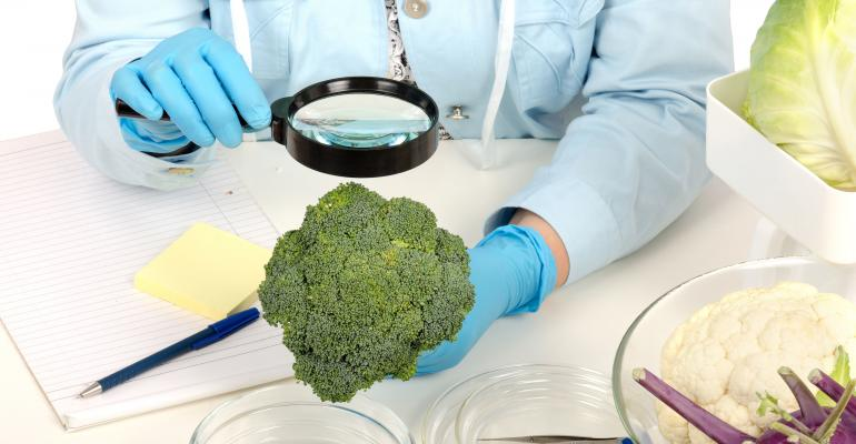 Magnifying Glass and Broccoli