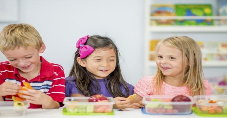 Mega Trends Influencing Kids' Food, Beverage Product Development