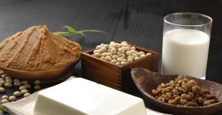 soy dairy ingredients