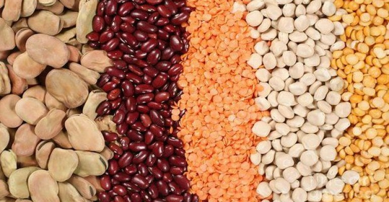 UN Declares 2016 The Year of Pulses