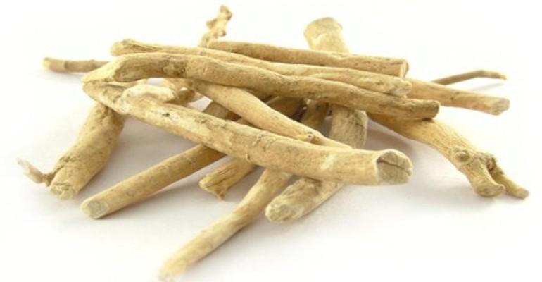 Ashwagandha roots, courtesy of KSM-66/Ixoreal Biomed