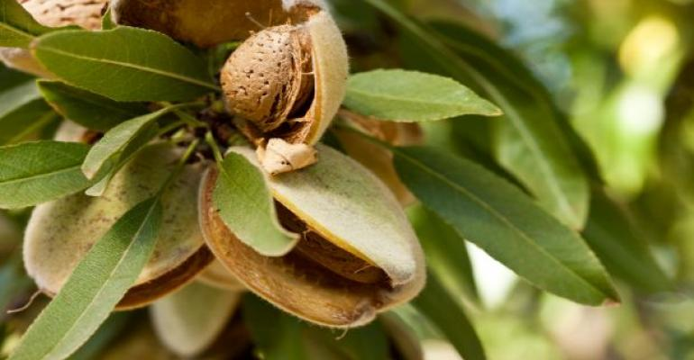 The Joy of Almonds