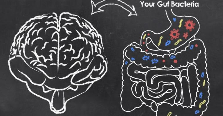 Do You Have the Guts to Perform? Microbial Balance, the Brain and Athletic Performance