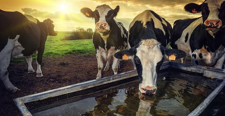 Dairy Industry Worried Changes to Treaty Could Hurt Global Trade