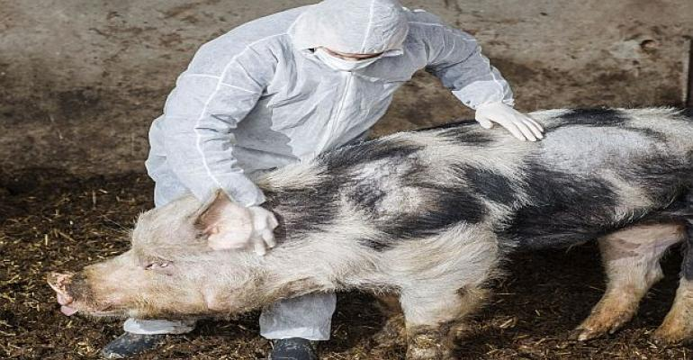 Food-Safety Group Questions Health Impact of Animal Drugs