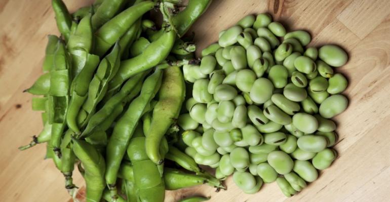 Fava Beans Provide Rich Source of Dietary Antioxidants