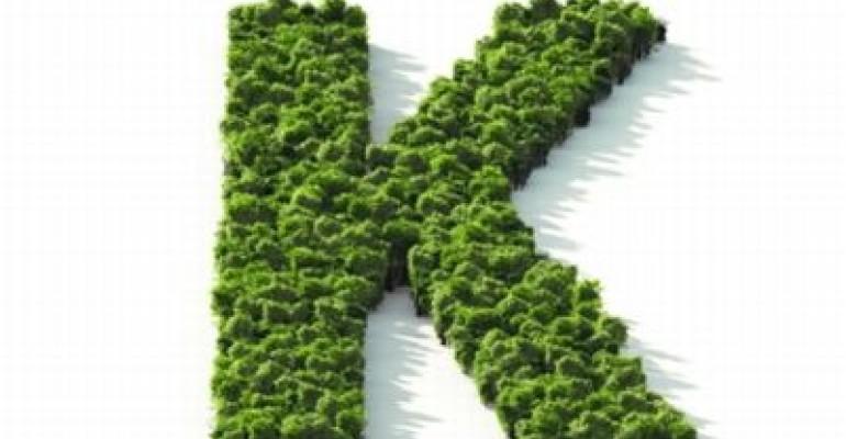 Leafy Letter K