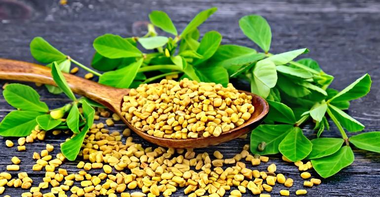 Ancient Herbs for Regulating Blood Sugar.jpg