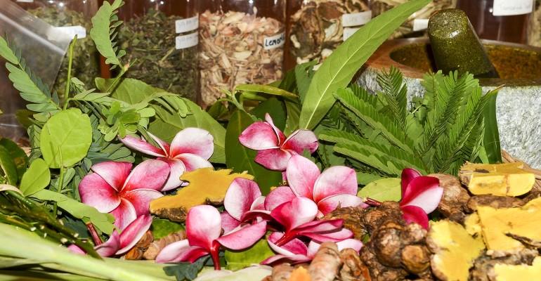 Ayurvedic Herbs & Botanicals