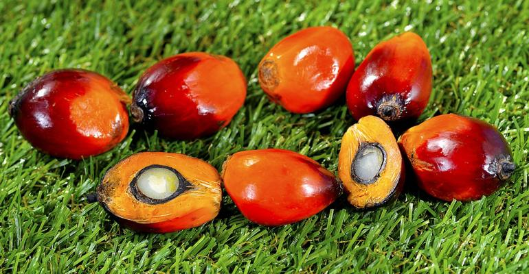 Red Palm Oil Pods with Oil Inside