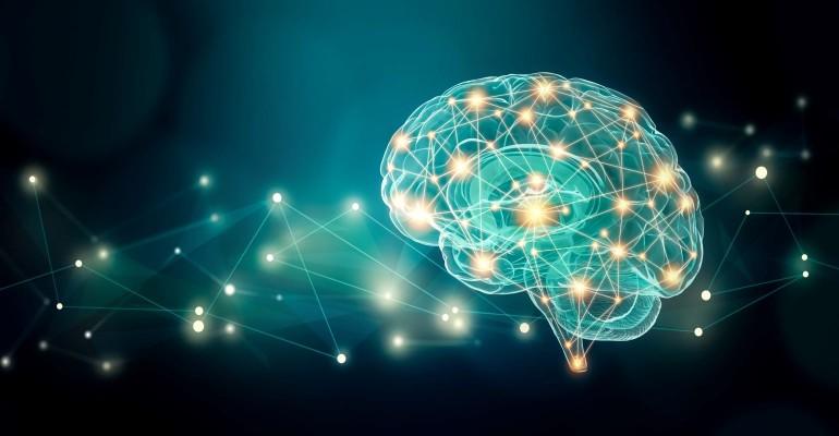 Brain Energy Performance_1413803099.jpg