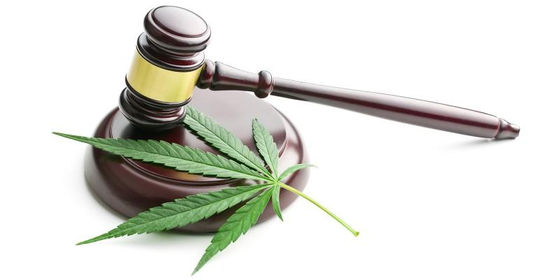 CBD A legal and regulatory update.jpg