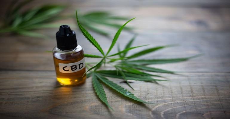 CBD Oil 2019