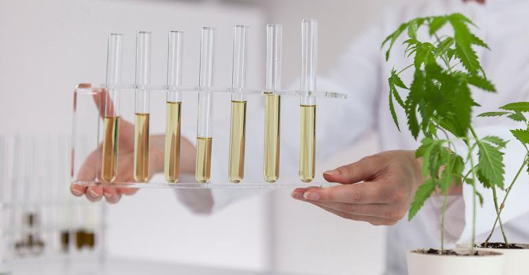 CBD hemp extracts and extraction processes.jpg