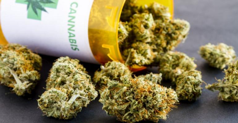 Cannabis buds image
