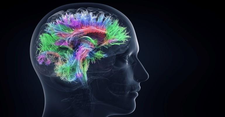 Cognitive processes_622433543.jpg