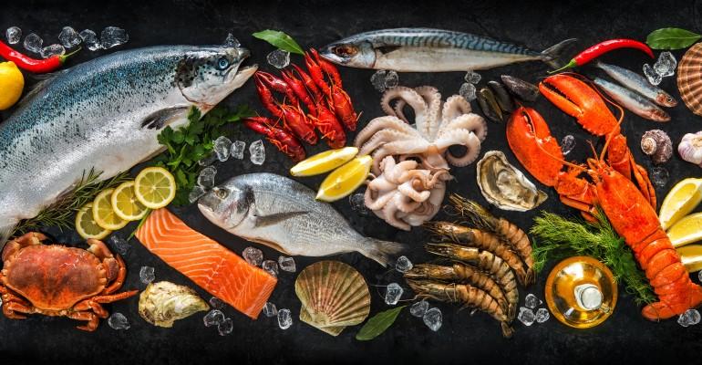 Plethora of Seafood
