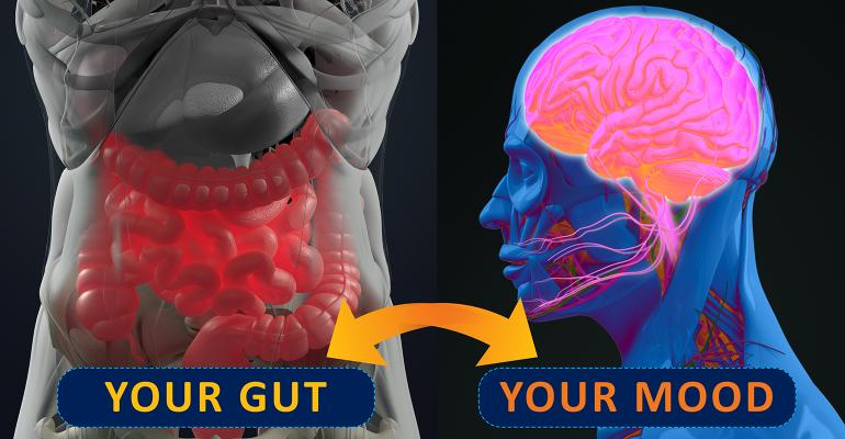 Science of the gut-brain axis.jpg