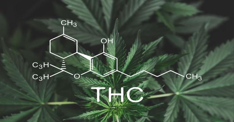 THC Testing 2019