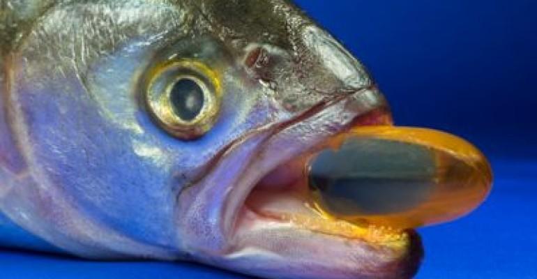 fish pill mouth.jpg