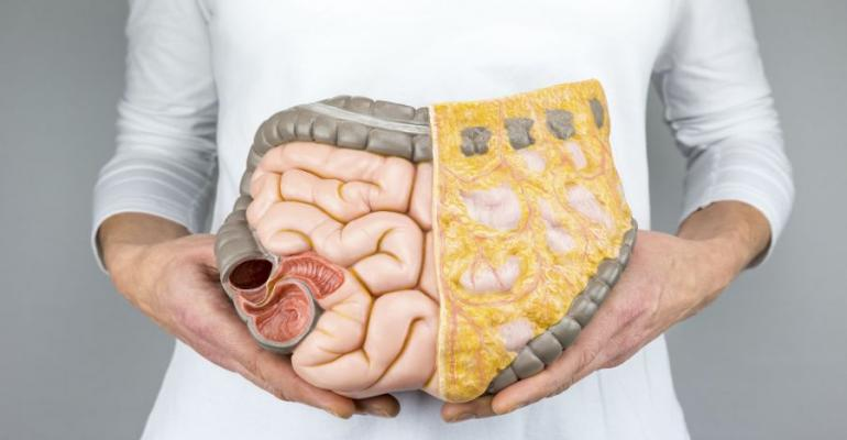 gut health top happs