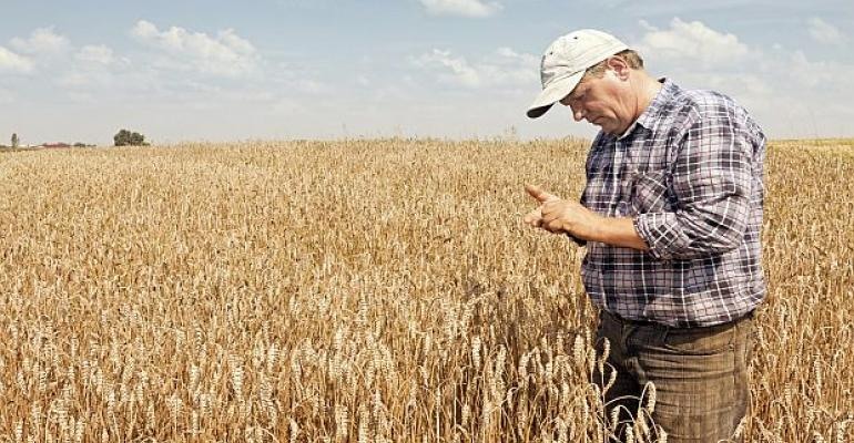 Monsanto, Wheat Farmers Resolve Lawsuits in 7 States