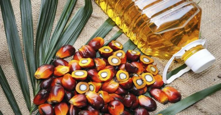 Rising Demand for Malaysian Palm Oil Due to Health, Sustainability