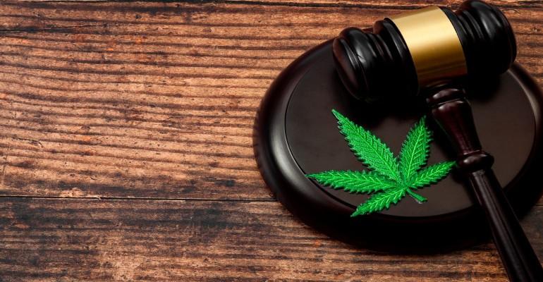 cannabis felon 2019