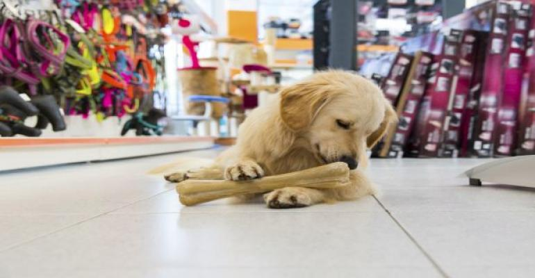 Pet Food Sector Prime Acquisition Target for Food Giants