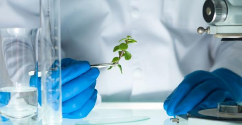 DNA Inadequate to ID Botanical Extracts