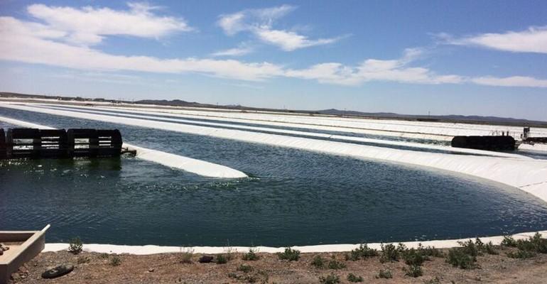 iWi New Mexico Algae Farm