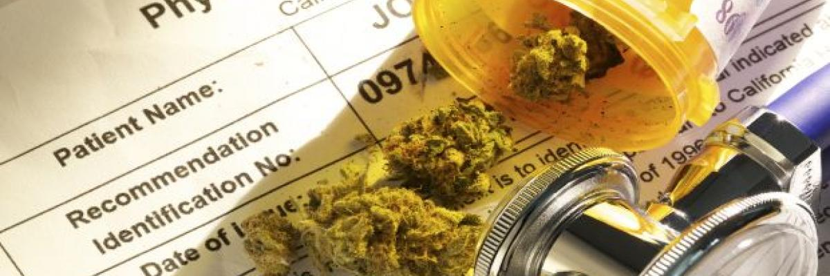 Cannabis Revolution: An Exploration of Hemp and CBD