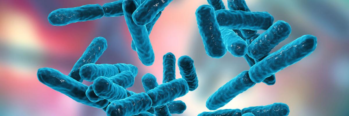 Probiotics: Masters of the microbiome