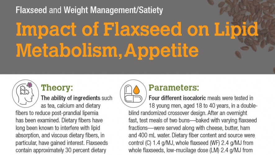 Infographic: Impact of Flaxseed on Lipid Metabolism, Appetite