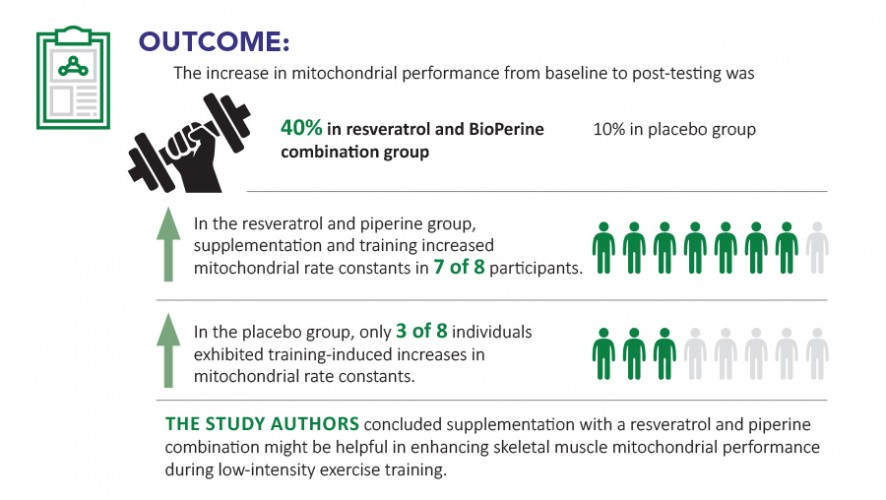 Infographic: BioPerine® and Resveratrol Enhance Skeletal Muscle Mitochondrial Performance