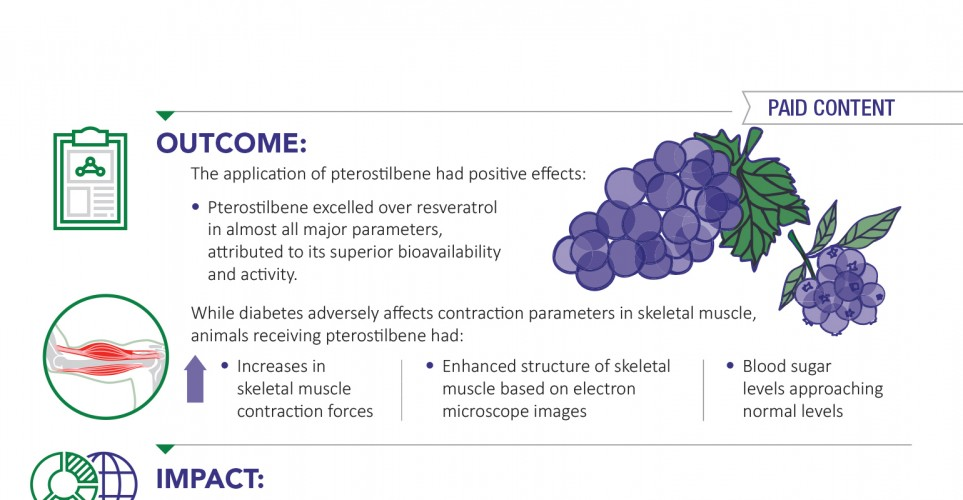 Pterostilbene – a powerful antioxidant supports muscle function for diabetics – infographic