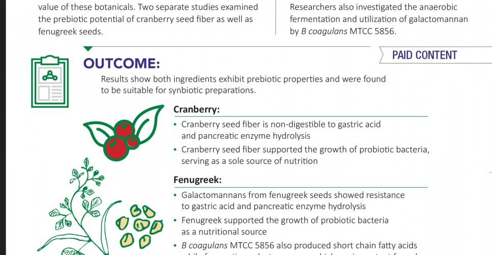 Prebiotics support digestive health in shelf stable probiotic formulations – infographic
