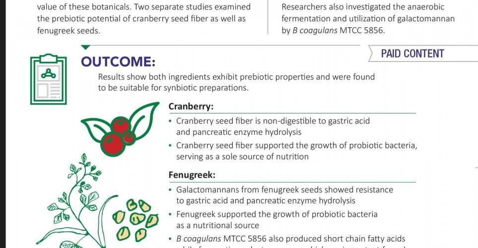Prebiotics support digestive health in shelf stable probiotic formulations – infographic