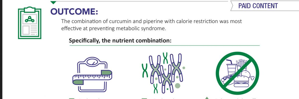 Curcumin and piperine support metabolic syndrome – infographic