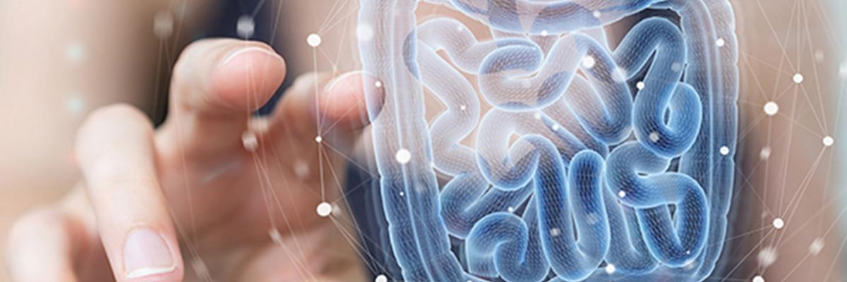 Digestive health: Market growth backed by science – digital magazine