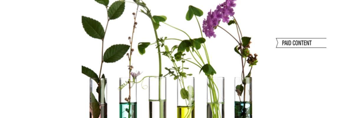 Botanical testing - webinar