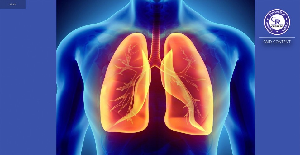 Systemic care for a healthy respiratory tract – white paper